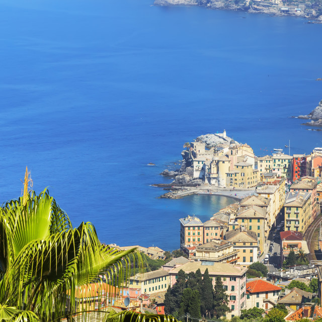 """Elevated view of Camogli and Gulf of Paradise, Camogli, Liguria, Italy, Europe"" stock image"