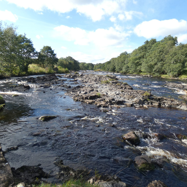 """River Tees close to Low Force waterfall"" stock image"