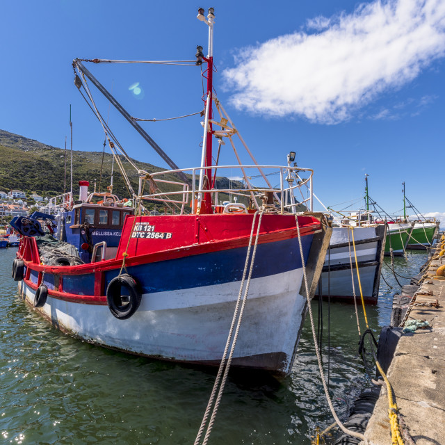 """""""Fishing boats moored in Kalk Bay Harbour."""" stock image"""