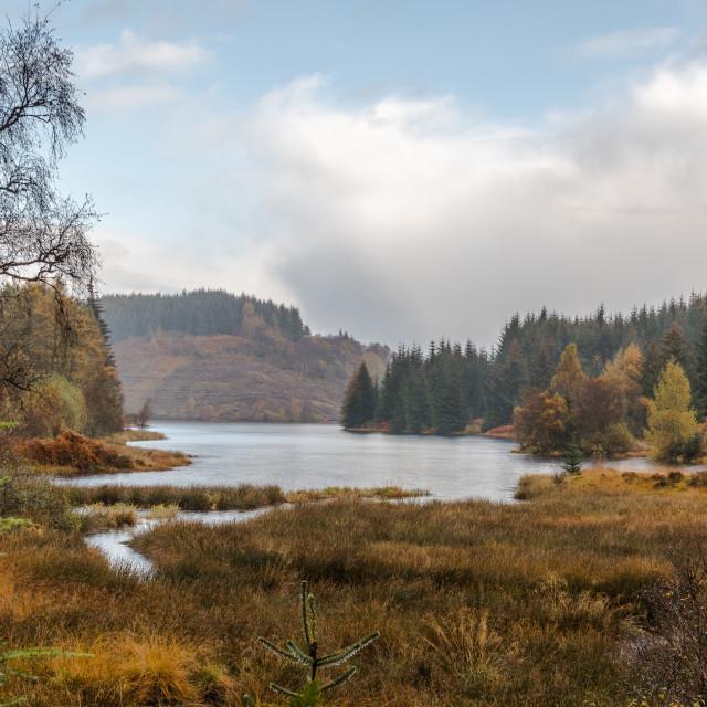 """""""Scottish Autumn landscape"""" stock image"""