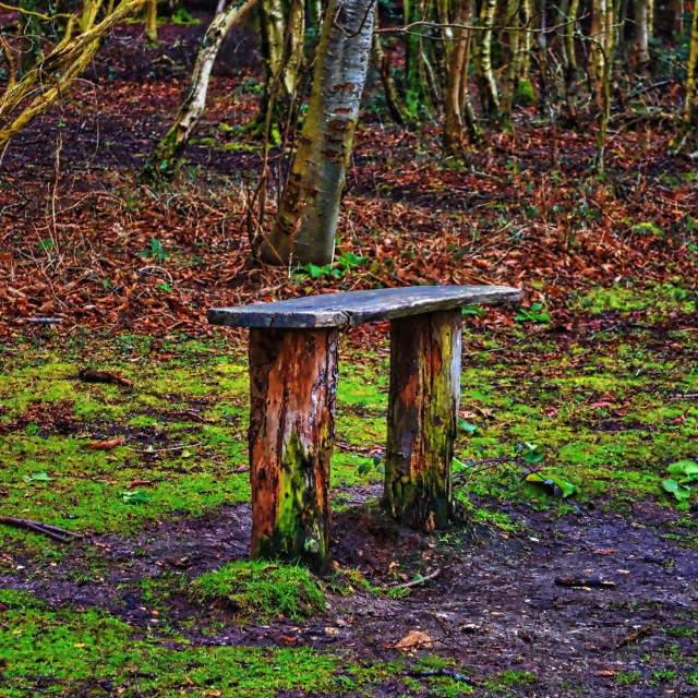 """""""A Lonely Seat"""" stock image"""