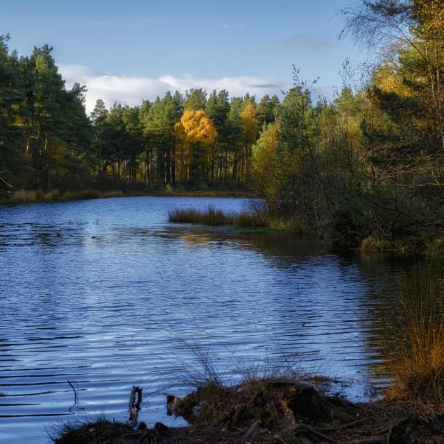 """Bordie Loch"" stock image"