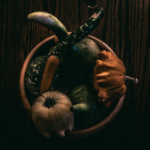 """Autumnal Still life"" stock image"