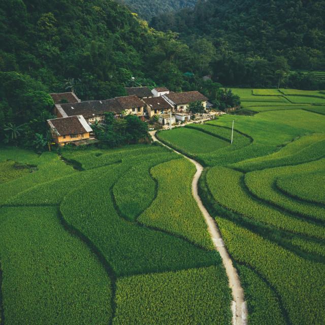 """Mu Cang Chai - Vietnam"" stock image"
