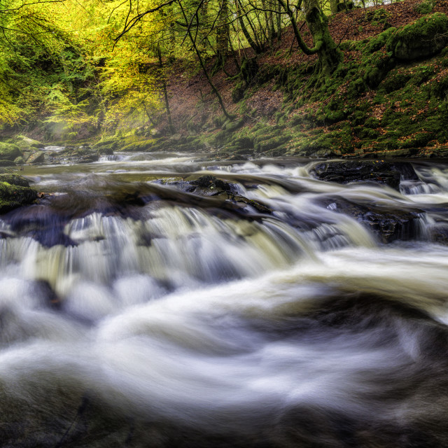 """Flowing through Autumn"" stock image"