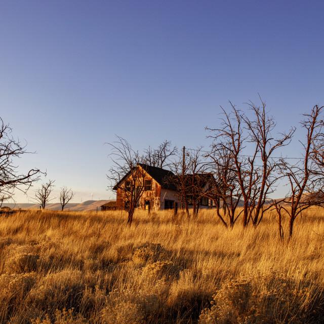 """Abandoned House in the Goodnoe Hills, Washington"" stock image"