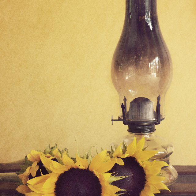 """""""Sunflowers and Oil Lamp"""" stock image"""