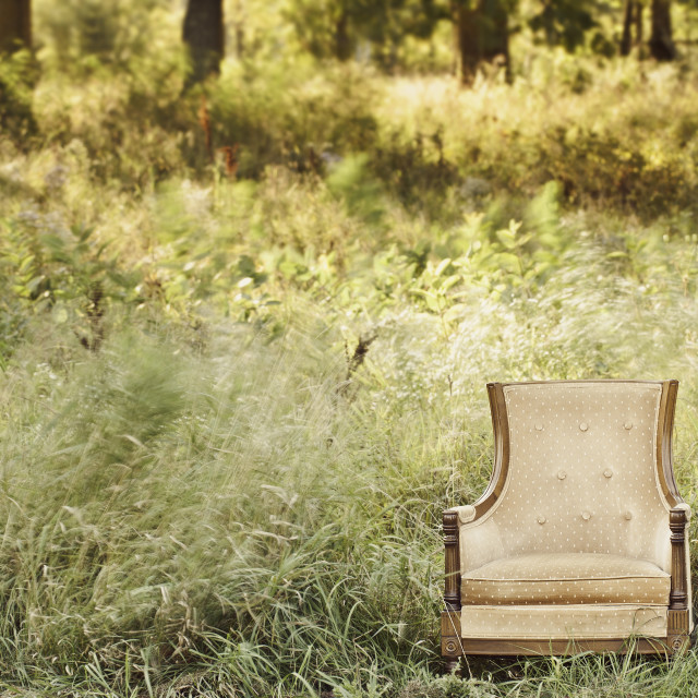 """Enchanting Chair"" stock image"