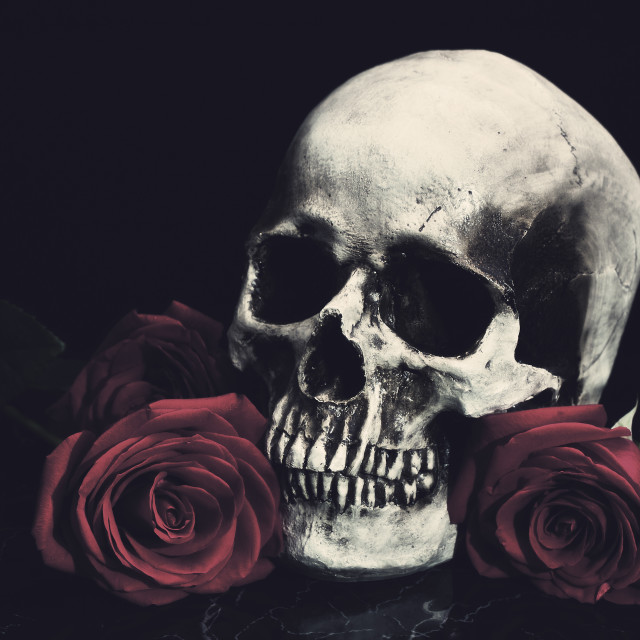 """""""Skull and Roses"""" stock image"""