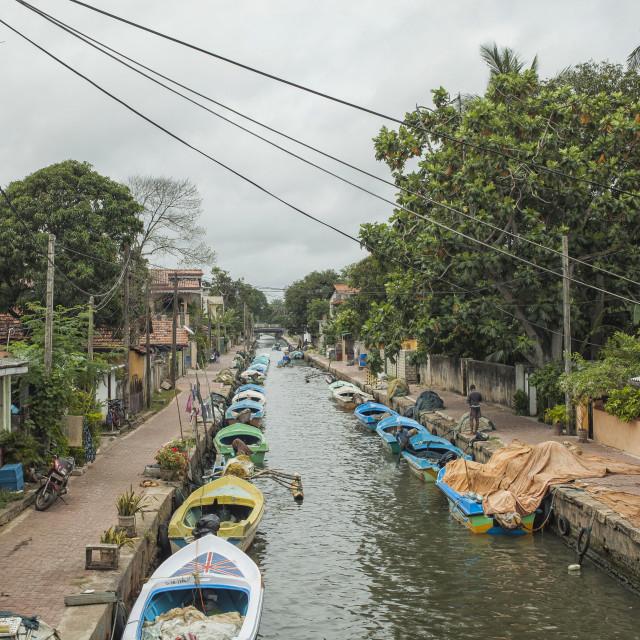 """""""Hamilton canal in Negombo"""" stock image"""
