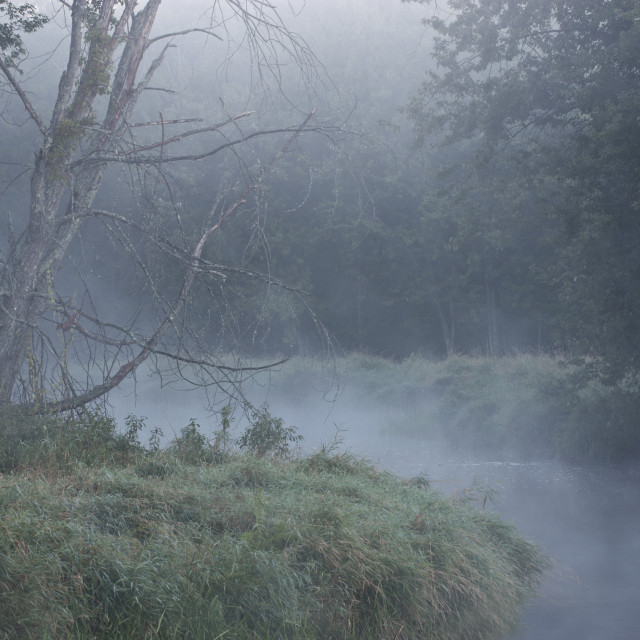 """Misty River Bend"" stock image"