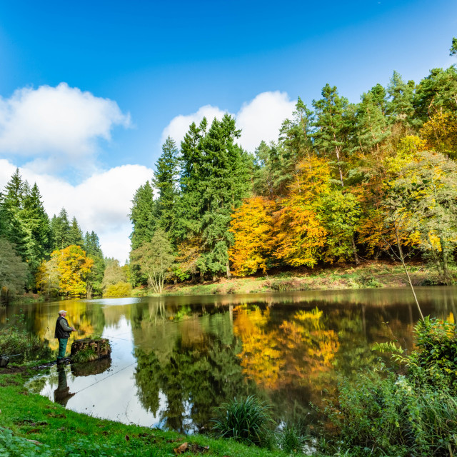 """""""Autumn at Soudley Ponds 5"""" stock image"""