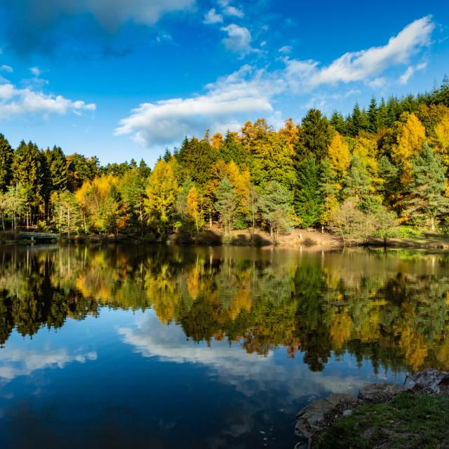 """""""Mallards Pike Lake 3"""" stock image"""