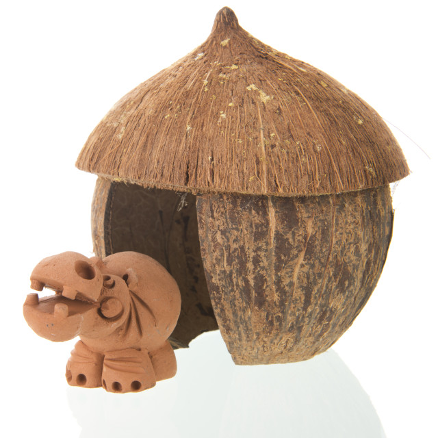 """Tropical straw hut with hippo"" stock image"