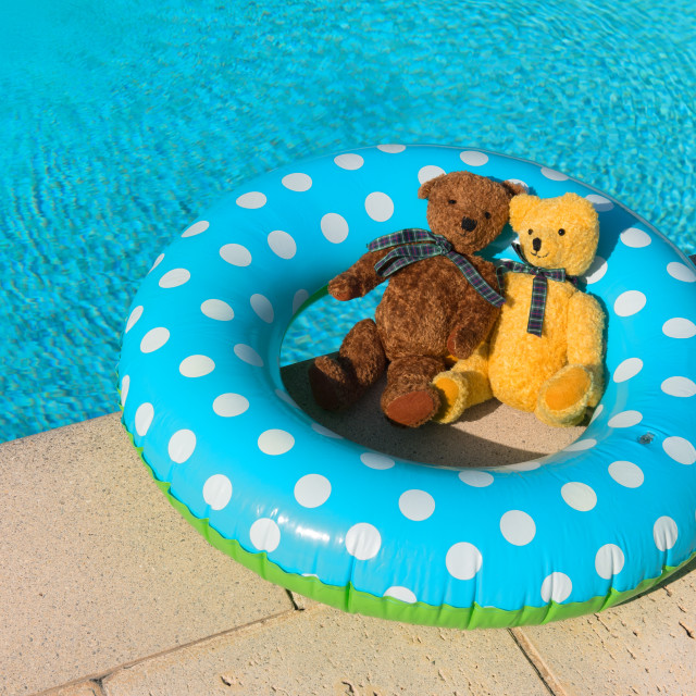 """Two toy bears floating in swimming pool"" stock image"