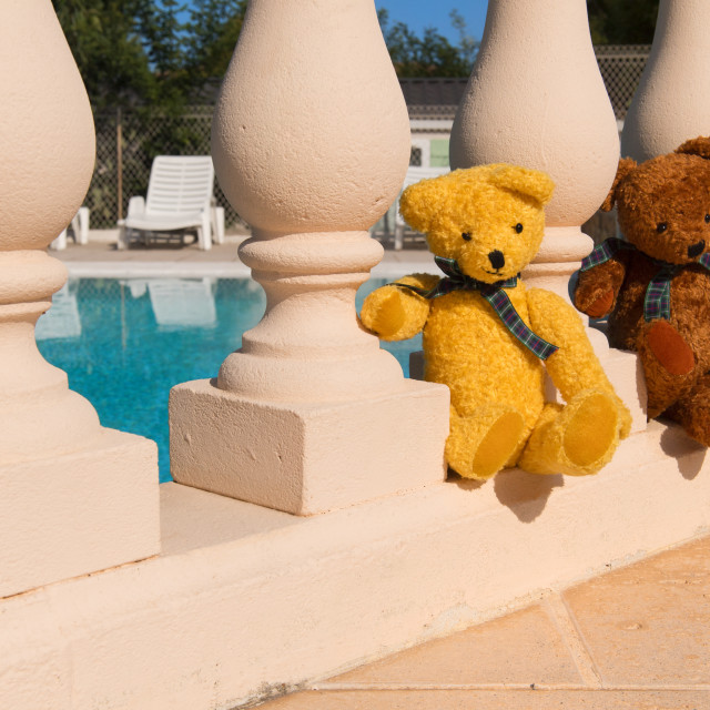 """Couple Bears at swimming pool"" stock image"
