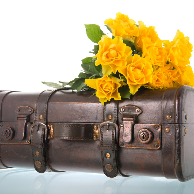 """Vintage suitcase with flowers"" stock image"
