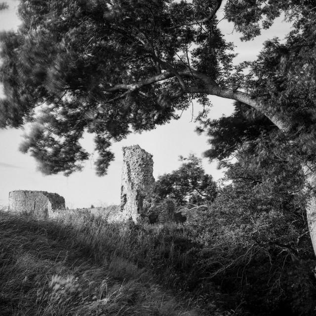 """Pevensey castle"" stock image"