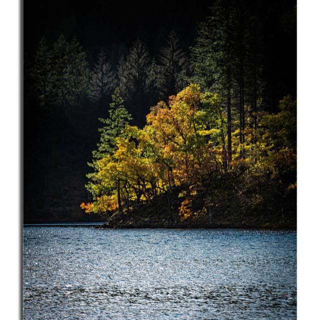 """""""Autumn Sun"""" stock image"""