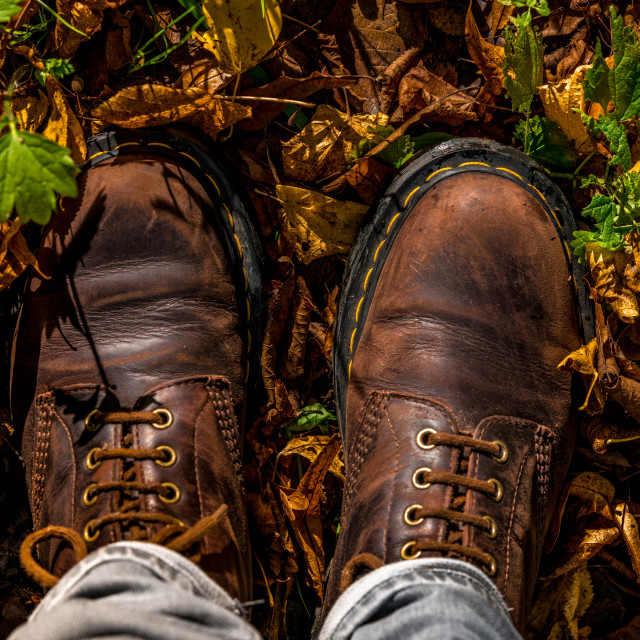 """""""Boots and autumn leaves"""" stock image"""