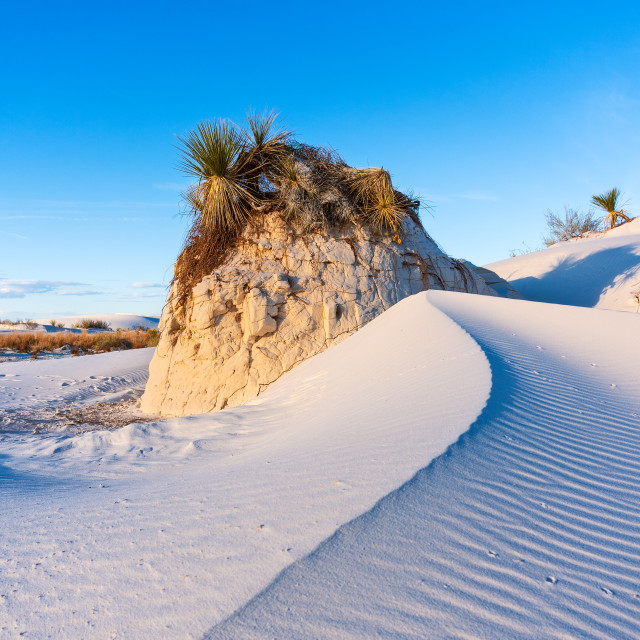 """Sand dune at White Sands National Monument"" stock image"
