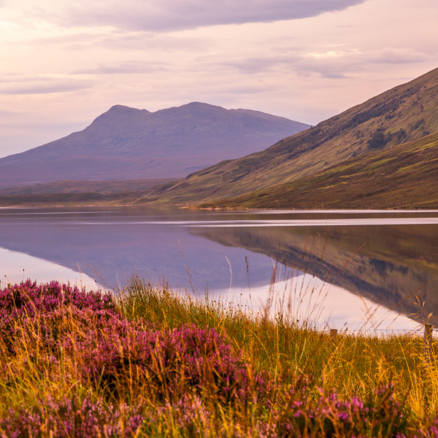 """Reflections in the Loch"" stock image"