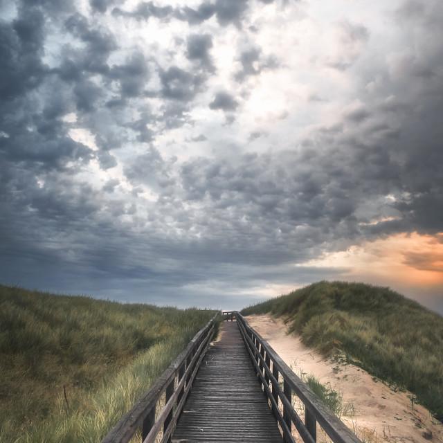 """Boardwalk through grassy dune landscape on Sylt island at sunset"" stock image"