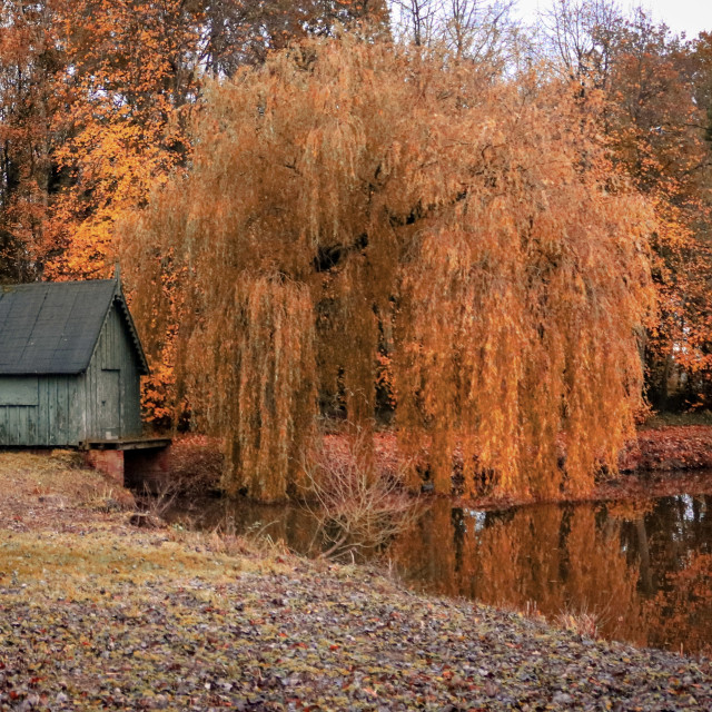 """""""Autumn by the Lake"""" stock image"""