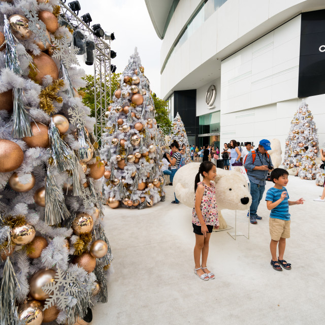 """People enjoying the Christmas decorations"" stock image"