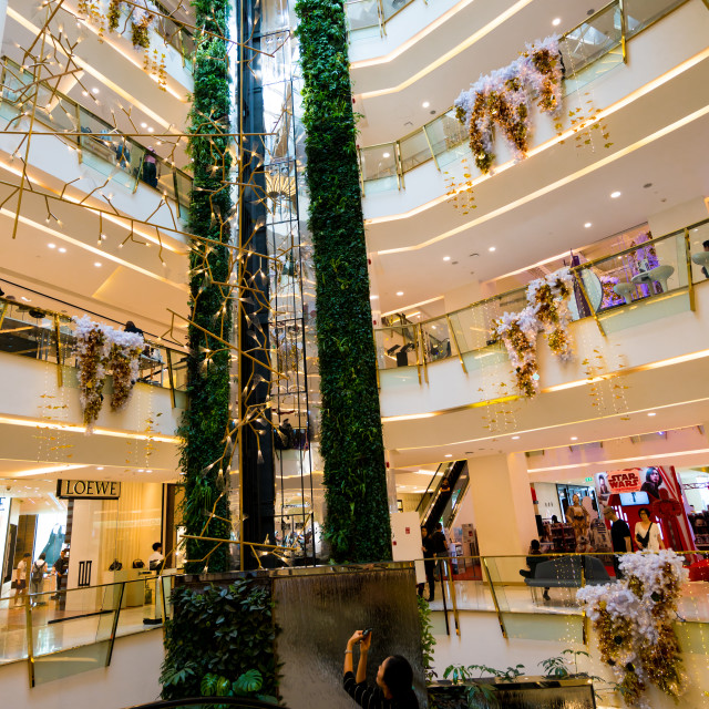 """""""Hanging garden in shopping mall"""" stock image"""