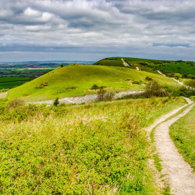 """Trail to Ivinghoe Beacon Chiltern Hills Buckinghamshire England UK"" stock image"