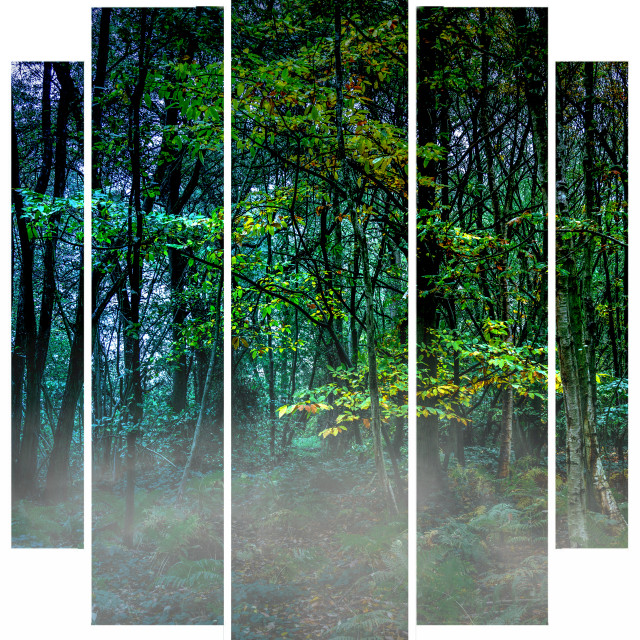 """""""Pentaptych Autumn Woods"""" stock image"""