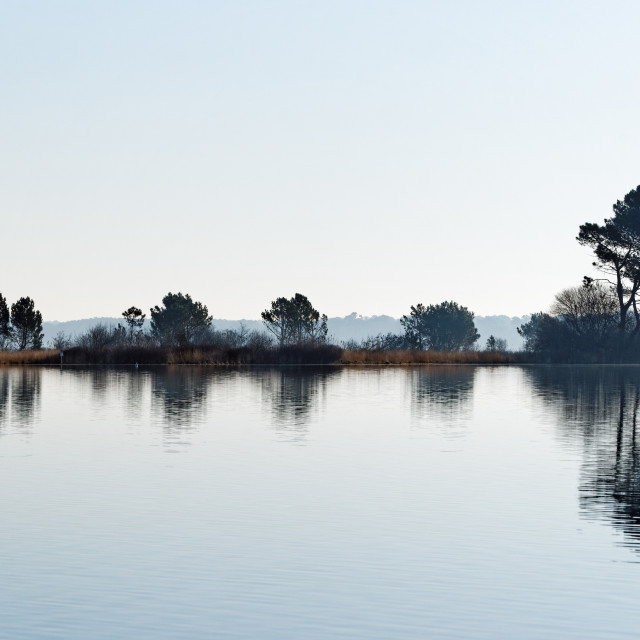 """""""Lake reflection"""" stock image"""