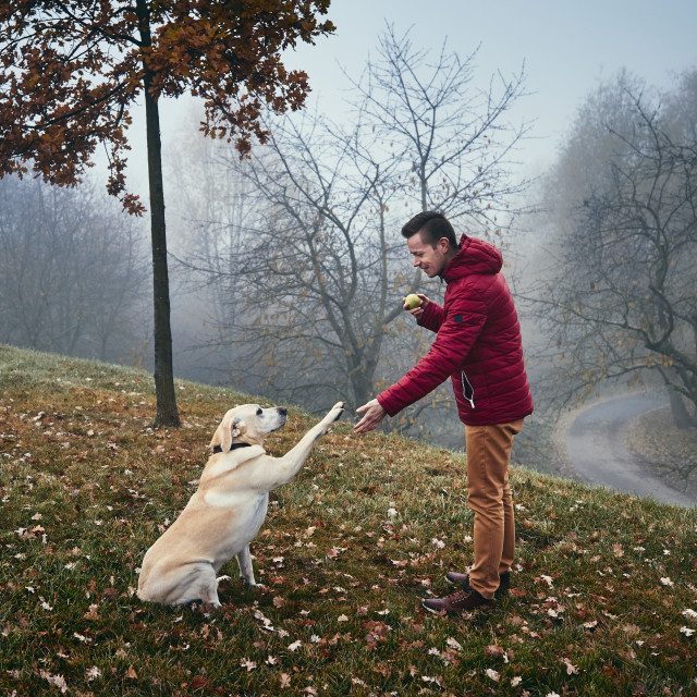 """Man with dog in autumn nature"" stock image"