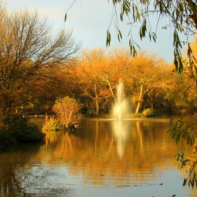 """""""Autumnal scene, Redcar's Locke park."""" stock image"""