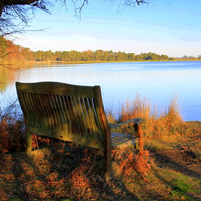 """Peaceful spot at Lockwood Beck."" stock image"