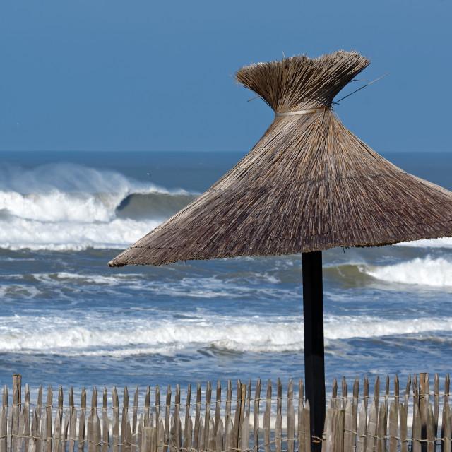 """""""Lacanau coast"""" stock image"""