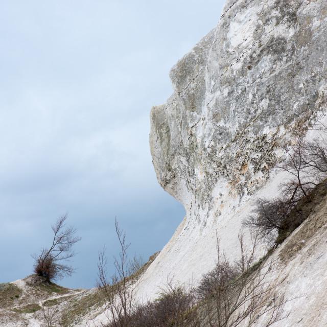 """Chalk cliff landscape on Moens Klint"" stock image"