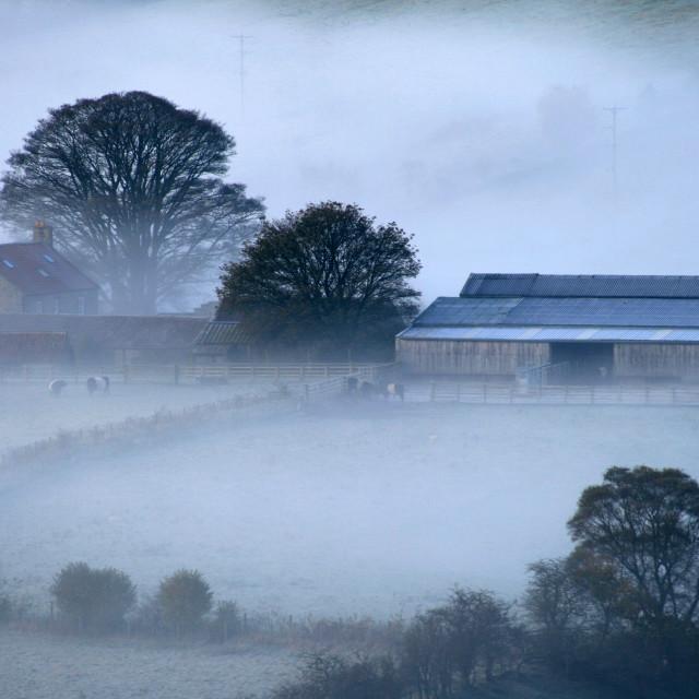 """Farm shrouded in mist."" stock image"