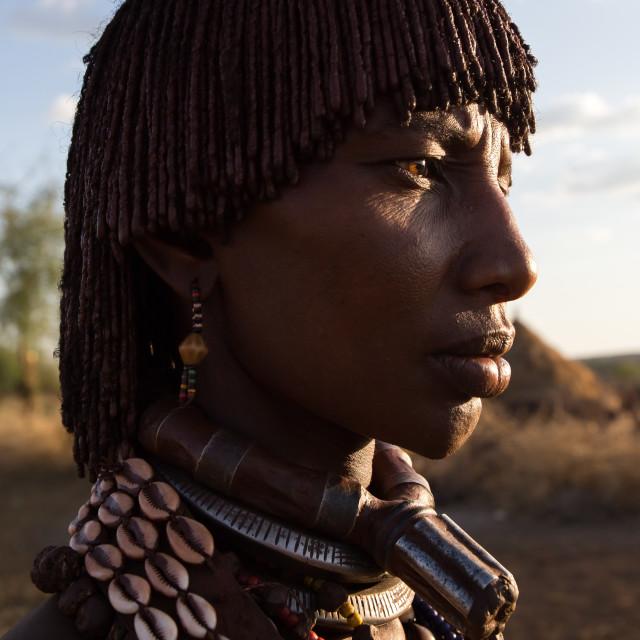 """Hamar Tribe"" stock image"
