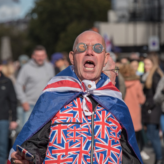 """""""Brexit Supporter"""" stock image"""