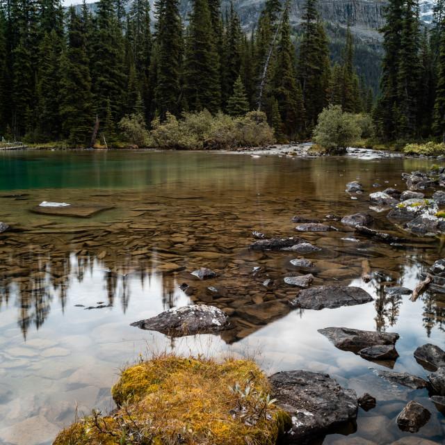 """""""Lake O'Hara"""" stock image"""
