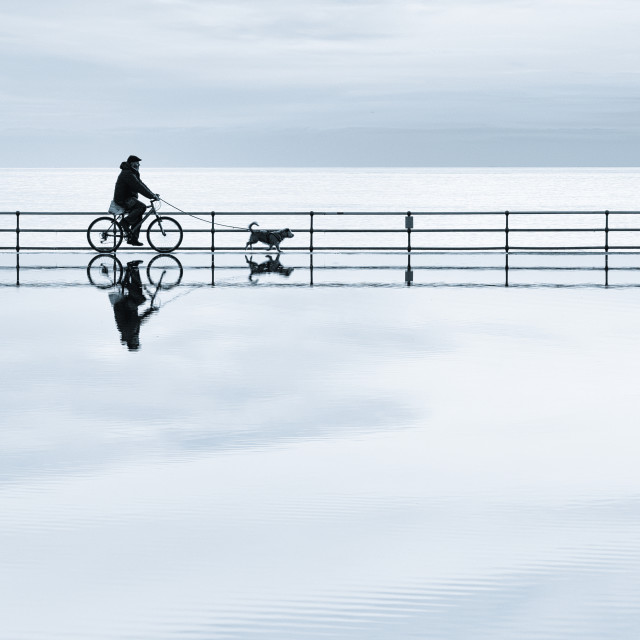 """""""A Cycle Dog Walk On Water"""" stock image"""