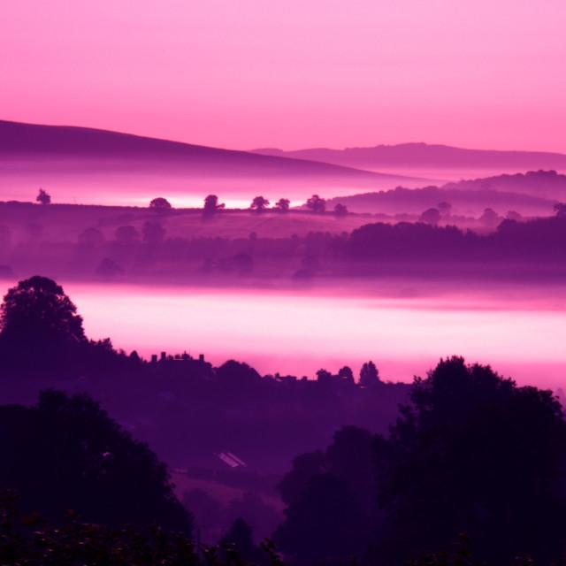 """""""Purple Mist"""" stock image"""
