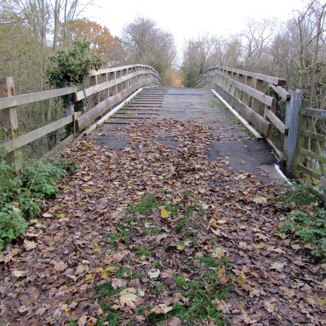 """Wooden bridge over Thames in Oxfordshire Autumn"" stock image"