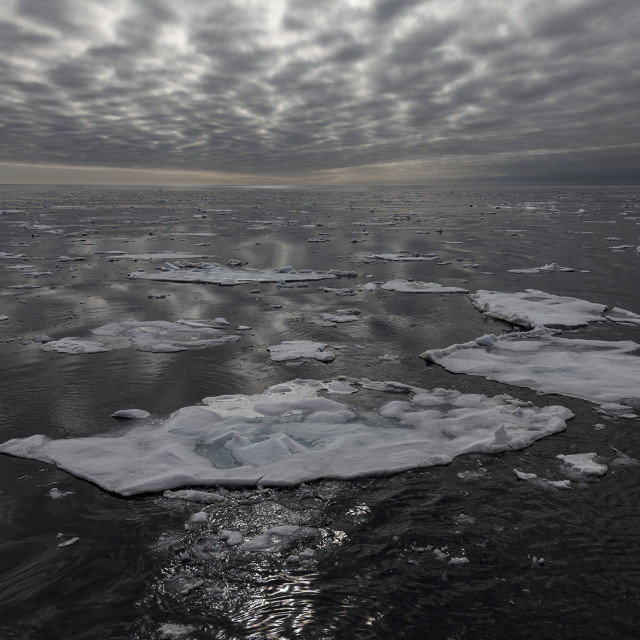 """Sea ice"" stock image"