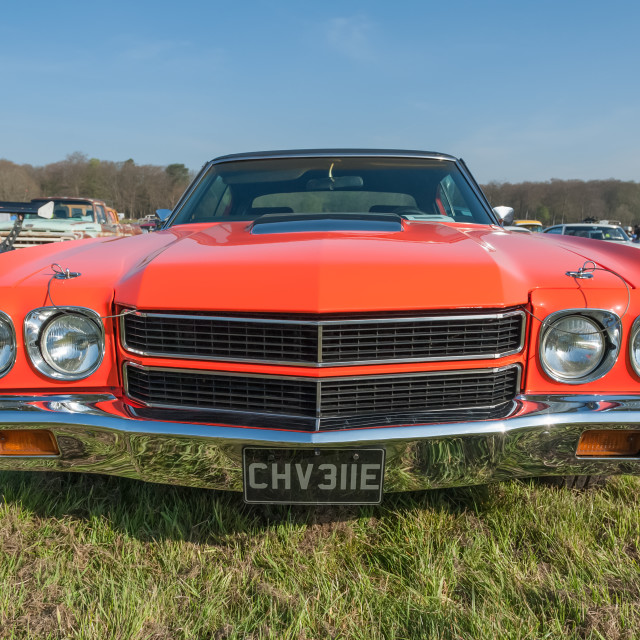 """""""Vintage American Chevrolet close-up"""" stock image"""