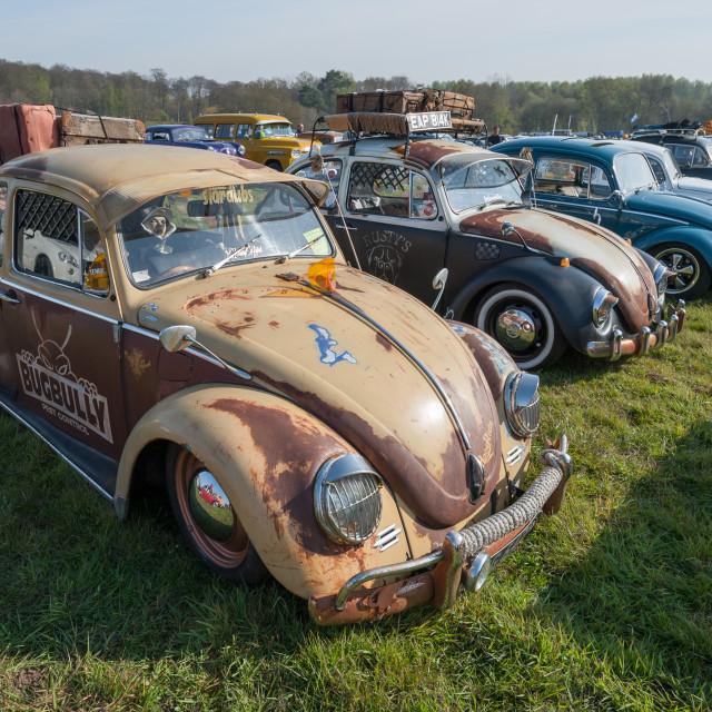 """""""Volkswagen Beetles"""" stock image"""