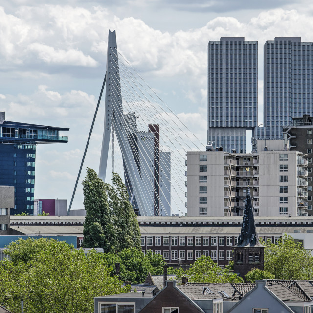 """Rotterdam skyline from Cool neighbourhood"" stock image"