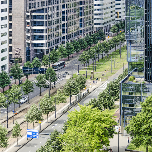 """Rotterdam Weena boulevard"" stock image"
